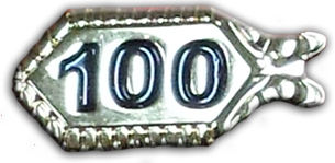 100th Anniversary Pin